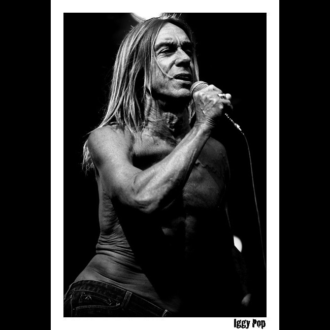 Iggy Pop Lollapalooza